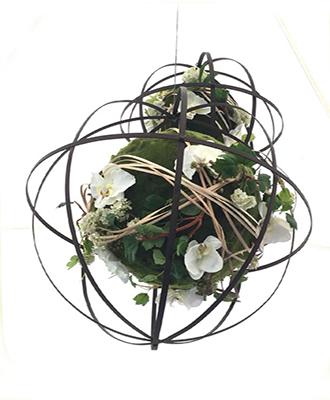 boule de plante